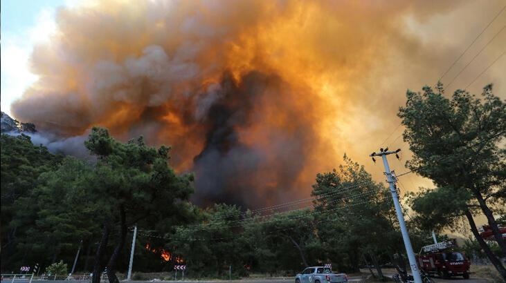 AFAD'dan ülke genelindeki yangınlara ilgili flaş açıklama